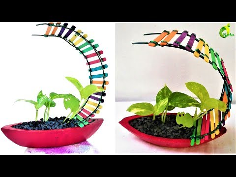🍀❤money plant decoration /money plant /ORGANIC GARDEN🍀❤
