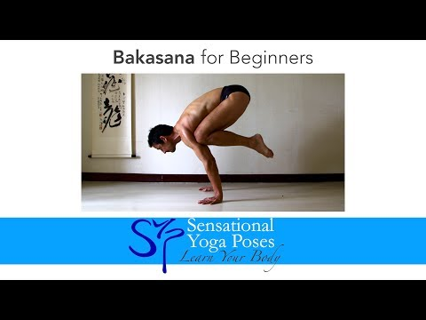Bakasana for Beginners, Crow Pose Yoga Arm Balance tutorial
