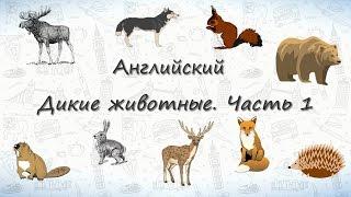 Животные на английском. Дикие Животные. Часть 1