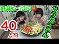 【大食い】ごまだれの野菜たっぷりサラダうどん40人前!※ずるずる音ありです※【双子】
