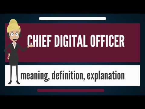 What is CHIEF DIGITAL OFFICER? What does CHIEF DIGITAL OFFICER mean? CHIEF DIGITAL OFFICER meaning