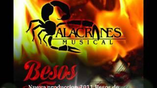 Te busque Alacranes Musical 2011