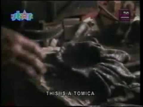 WOLFGANG Atomica (music video)
