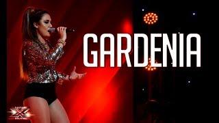 Gardenia brilla en el escenario Dedicatorias Factor X Bolivia 2018