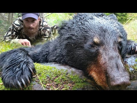 SNEAKING Up On BEAR Catch, Clean And Cook