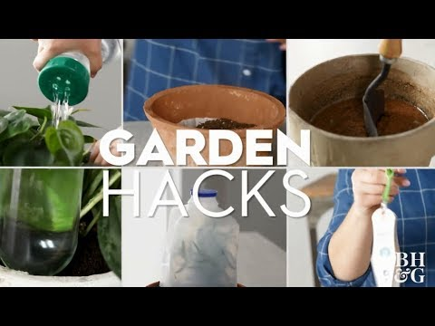 Garden Hacks | Gardening & Outdoor Living | Better Homes & Gardens