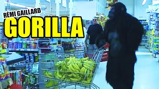 Dangerously funny videos created and produced by Rémi GAILLARD. htt...