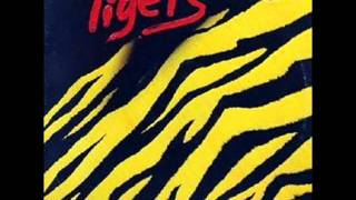 The Tigers - Watch this space