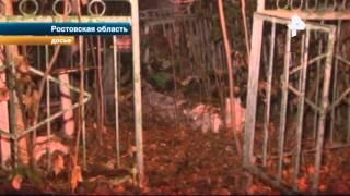Суд: молодые люди раскопали могилу сделать из черепа пепельницу