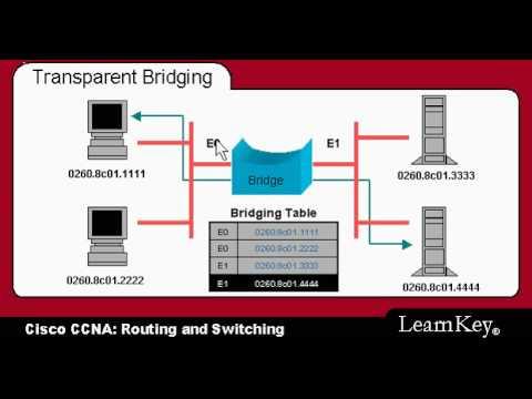 CCNA Training Video(Transparent Bridging) avi