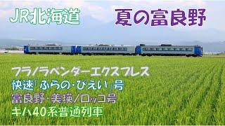 JR北海道 夏の富良野