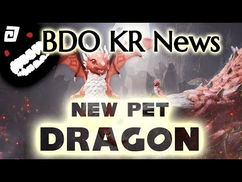 Young Red Dragon, The New Pickup Pet in KR   BDO Black