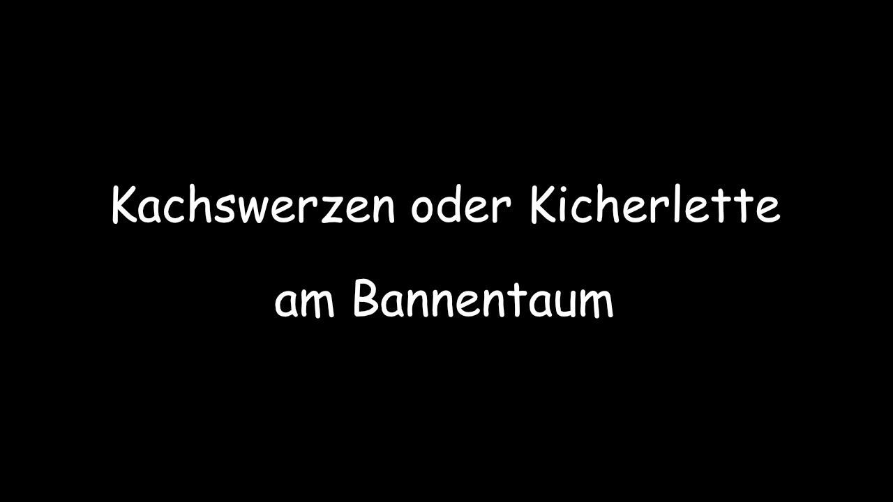 Kachswerzen oder Kichterlette am Bannentaum / 2017 | X