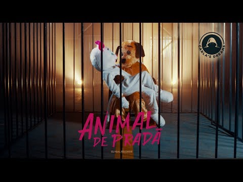 Carla's Dreams - Animal de Prada | Official Visualizer