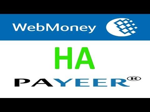 Как перевести деньги с Webmoney на Payeer за 10 минут