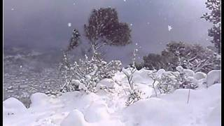 Nevada Mallorca 04-02-2012