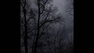 "[FREE] LiL Peep x Brennan Savage x ColdHart Dark Type Beat ""roam"" (prod. by Discent)"