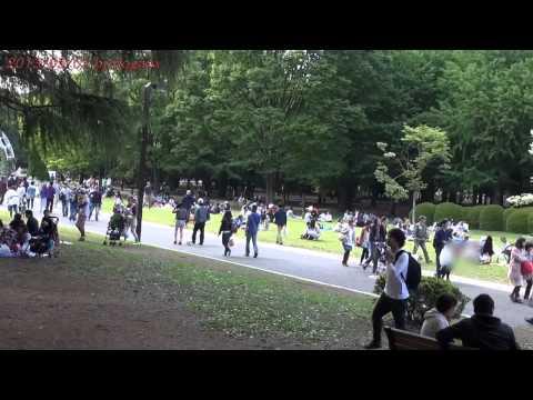 Japan Trip 2013 Tokyo Yoyogi Park holiday in Shibuya 596
