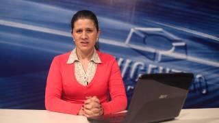 O Estado e os Problemas Contemporâneos - Letícia Gramázio - Apresentação