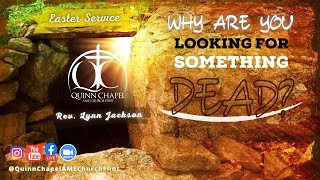 Why Are You Looking For Something Dead? | Rev. Lynn Jackson