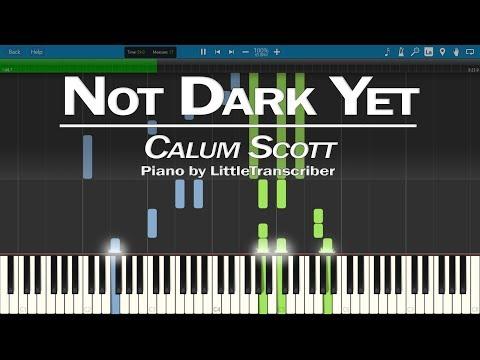 Calum Scott - Not Dark Yet (Piano Cover) By LittleTranscriber