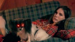 Смотреть клип Skott - Bloodhound