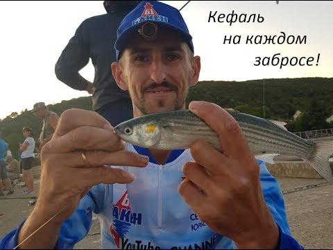 Ловля кефали в черном море спиннингом с берега. сентябрь 2019г