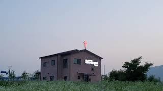 계란꽃과 교회당!