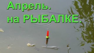 Апрель. на Рыбалке. Ловил поплавочной удочкой. Fishing. Ловля на поплавок(Апрель. на Рыбалке. Ловил поплавочной удочкой. Fishing .….((Мой канал- это (в основном) канал ЛЮБИТЕЛЯ-рыболова..., 2016-04-09T05:58:58.000Z)