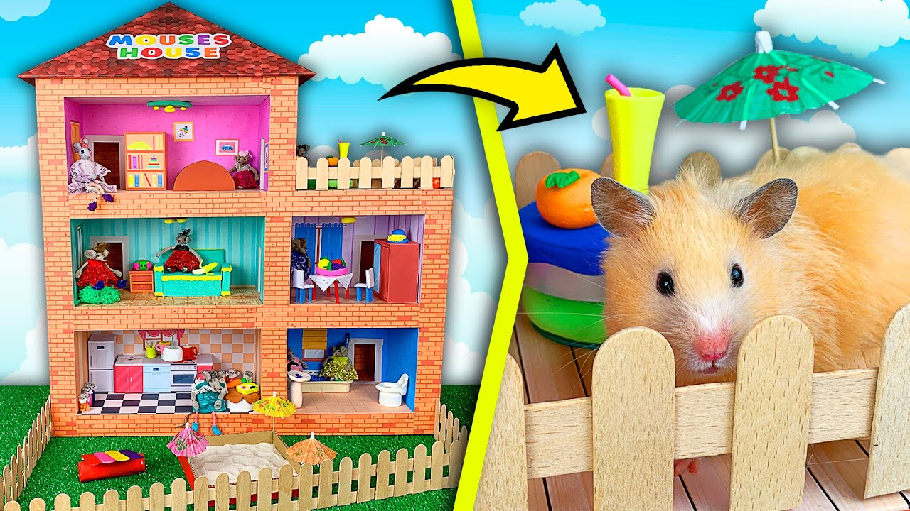 New Cardboard House for Hamster - Mouses House