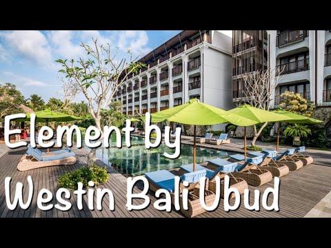 【バリ島ウブド旅行】Element By Westin Bali Ubud 🌺【Bali】🌺【家族でホテル紹介】