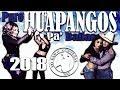 Puros Huapangos Pa' Bailar 2018 -DjsYBN