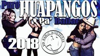 Puros Huapangos Pa' Bailar 2018 -DjsYBN thumbnail