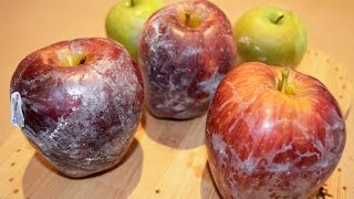 Apples and Wax - What You Should Know