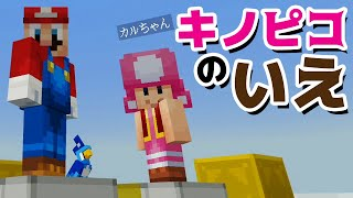 Minecraft Super Mario Edition of Kinopico home【Anakena & Karu-chan】