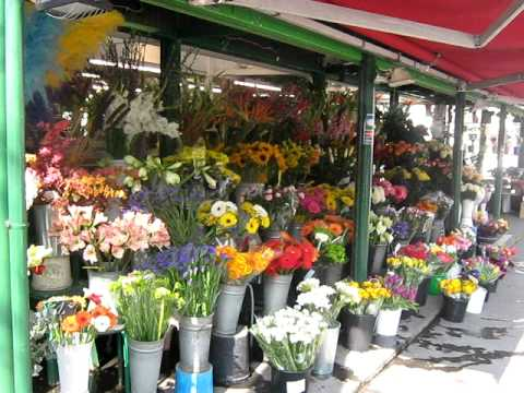 PLACE DES TERNES FLEURISTE PARIS - YouTube