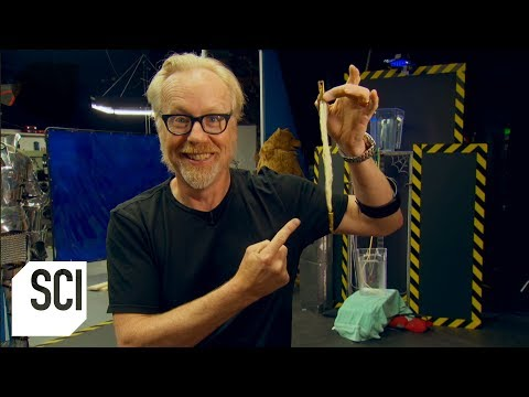 Is Spider Silk Stronger Than Steel? | MythBusters Jr.