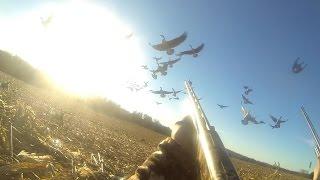 Goose Hunting GoPro Honk Honk Bang Bang Vol. 1 Opening Day 2015