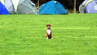 Hooton Lodge Campsite, Rotherham, Yorkshire.wmv