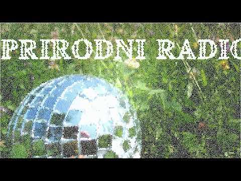 Prirodni Radio - klostar birds 2018-05-18 11-21-18