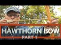 HAWTHORN BOW. The Hedgerow Selfbow. Primitive Technology in the Hedgerow. Part 1.