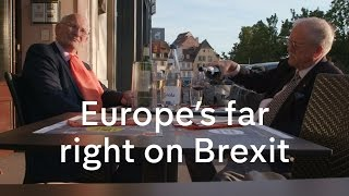 Brexit: what does Europe's far right think?