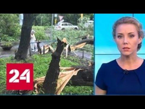 """""""Погода 24"""": три человека пострадали во время урагана в Перми - Россия 24"""