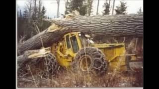 forest machine crash  extrame
