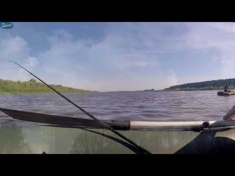 Рыбалка летом, красивые моменты глазами рыбака- видео зарисовка