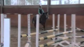 Trainingsvideo von Boerlin d'Alêne im Febuar 2013