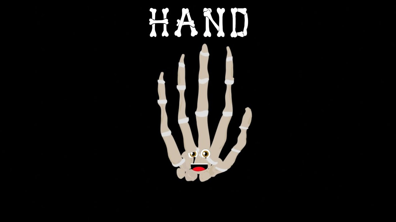 Hand Songthe Human Body For Kidslearn About The Human Body For