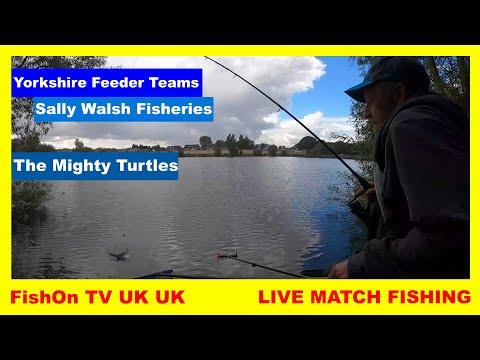 FishOn TV UK : YORKSHIRE FEEDER TEAMS : LIVE MATCH FISHING : SALLY WALSH FISHERIES : MIGHTY TURTLES