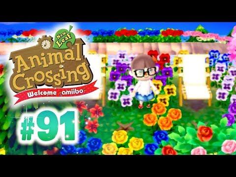 Vid O Animal Crossing Happy Home Designer Avec Guillaume Et Kim