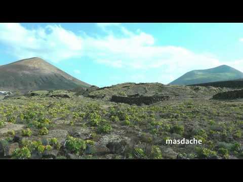 SPAIN La Geria, Lanzarote (hd-video)